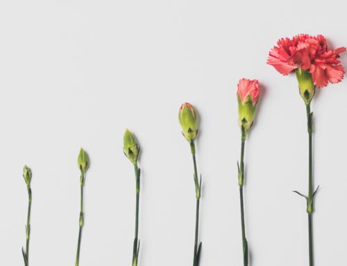 Você Está Mudando Para Melhor? 5 Maneiras de Saber