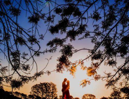 O Que é o Amor Verdadeiro? 03 Coisas Que Você Talvez Não Saiba Sobre a Força Mais Poderosa do Mundo